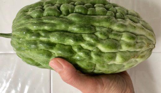 ゴーヤ料理6品・道の駅で購入した野菜料理